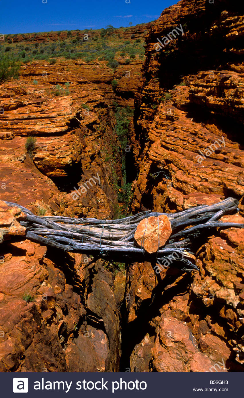 bridge made of a bundle of large dry eucalyptus branch over a cleft in Kings Canyon in Australia Stock Photo