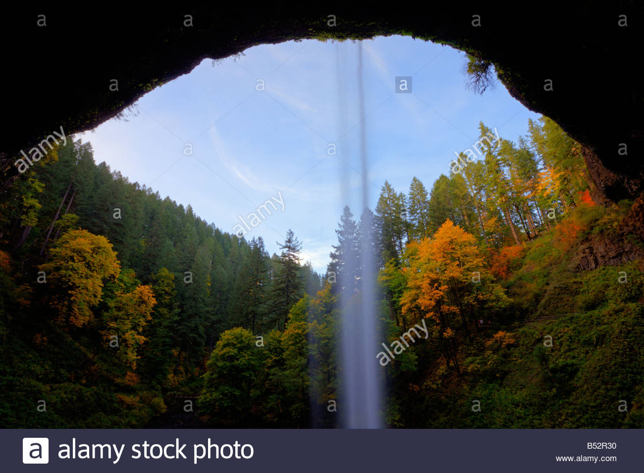 Vibrant fall color is visible from behind South Silver Falls, Oregon. - Stock Image