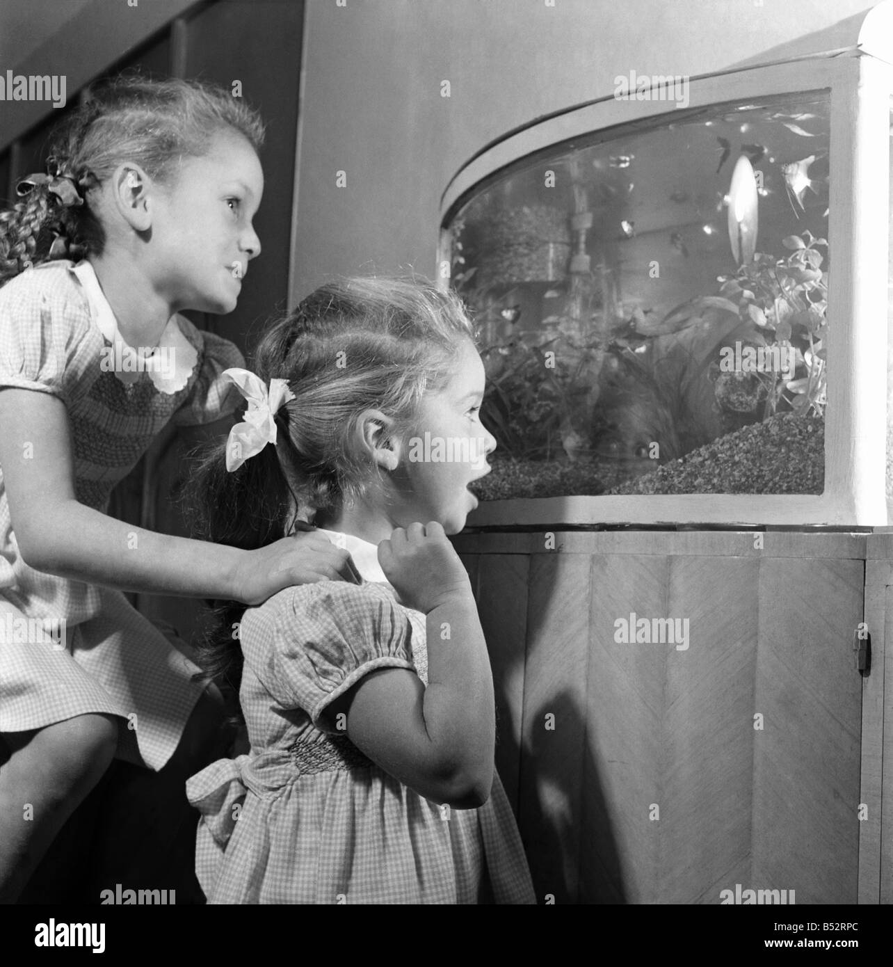 Children of Nat Temple looking at fish and other sea life in an aquarium March 1953 C4833 - Stock Image