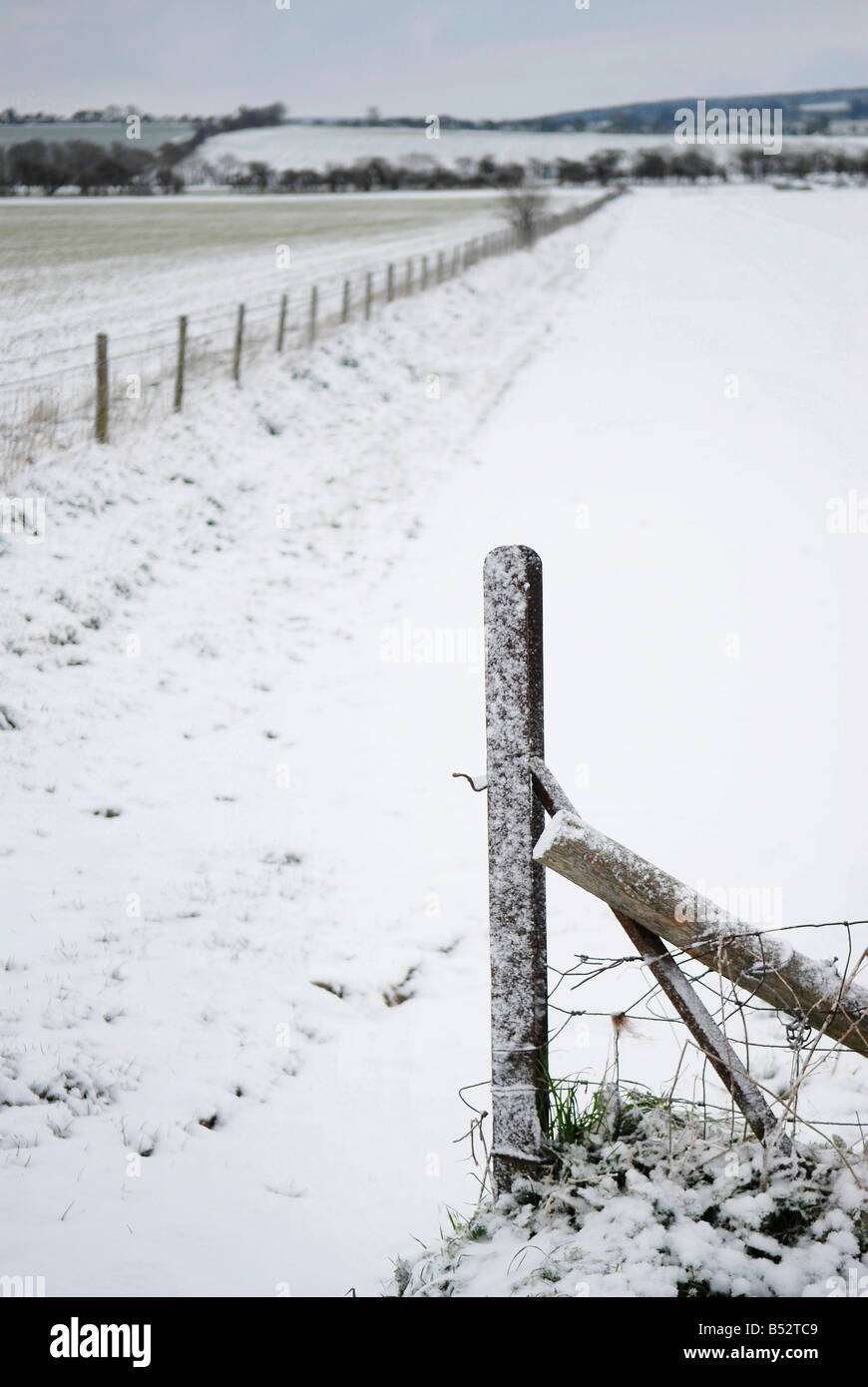 fencepost and field under light snow - Stock Image