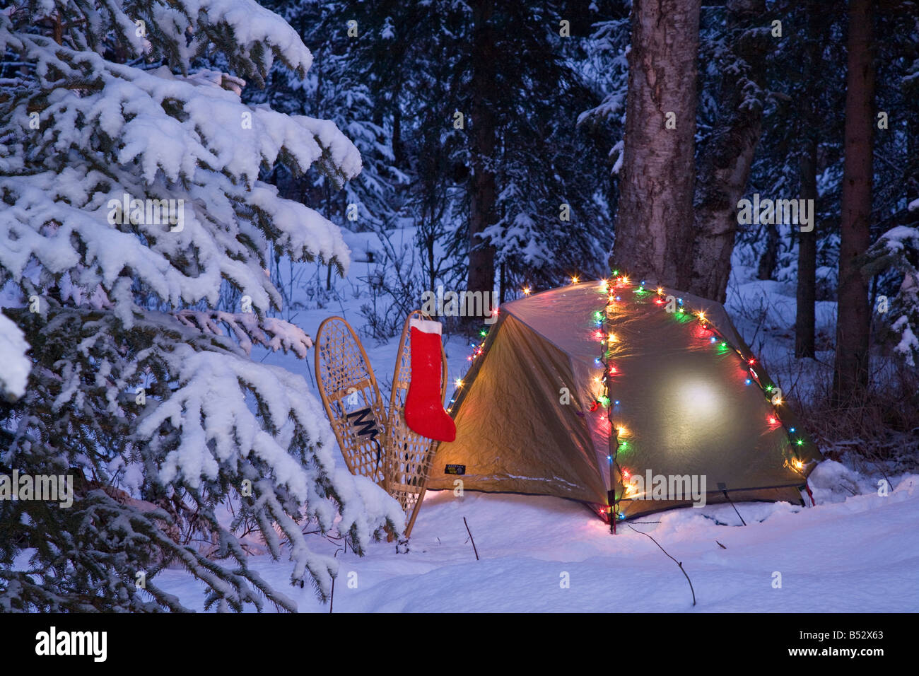 Christmas In The Woods.A Tent Is Set Up In The Woods With Christmas Lights And
