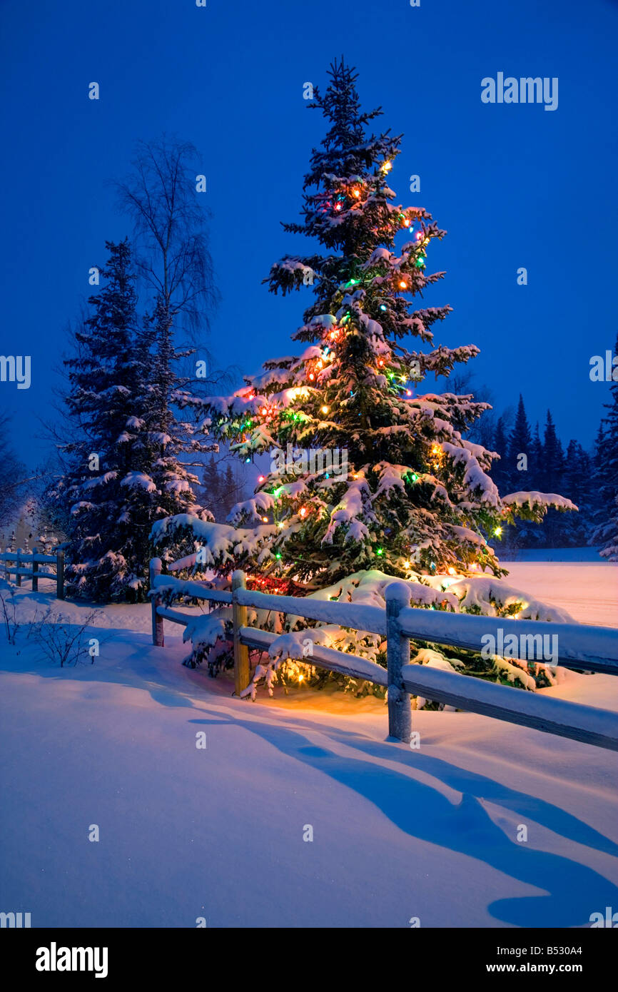 Decorated Christmas Tree Along Snow Covered Fence Rail Night Stock