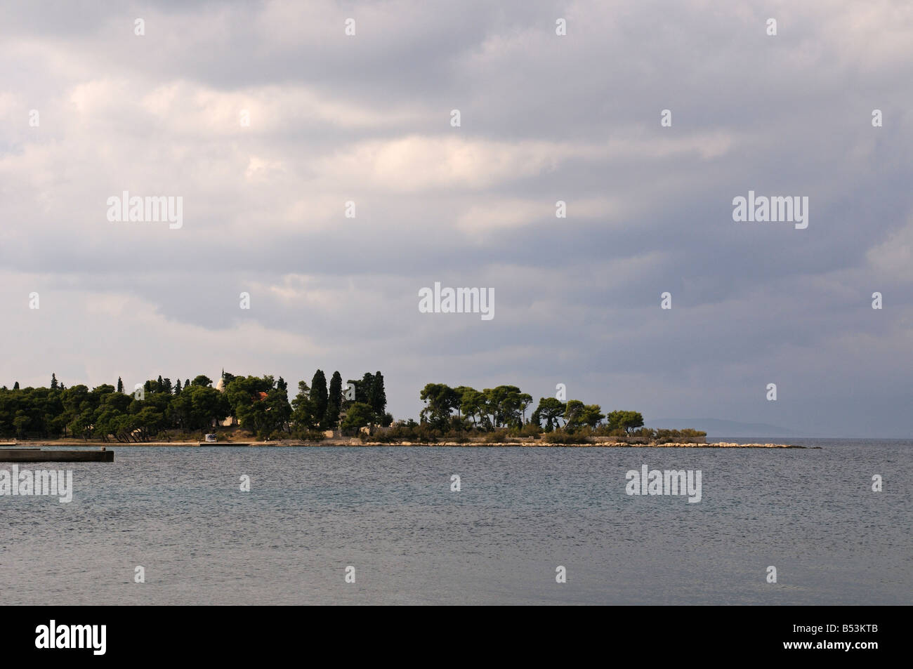 Evergreen trees on the beach in Supetar on the island of Brac Dalmatia Croatia - Stock Image