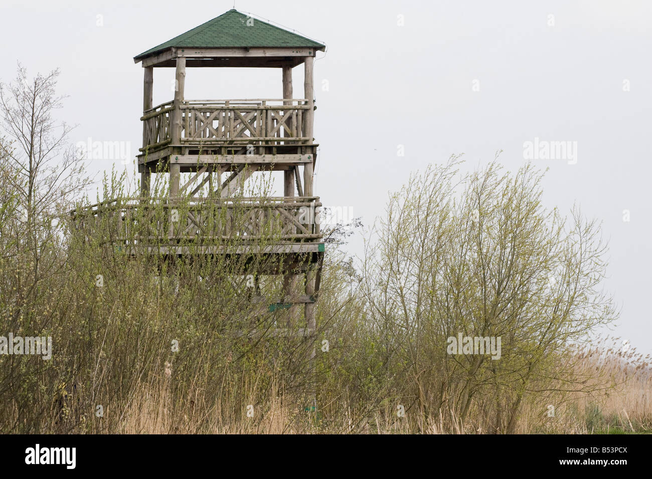 tower control tower to watch observe bird wildlife - Stock Image