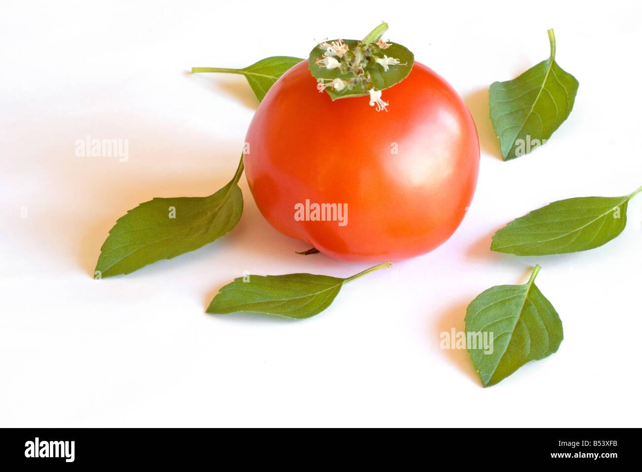 Tomato and basil - Stock Image