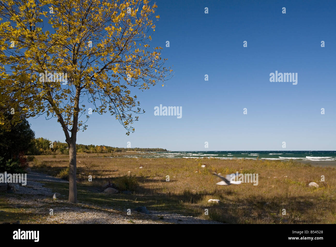 Site of Former Nuclear Power Plant on Lake Michigan - Stock Image