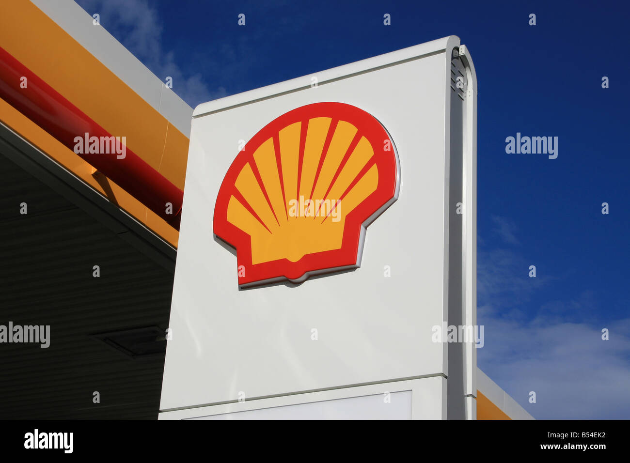SHELL - Stock Image