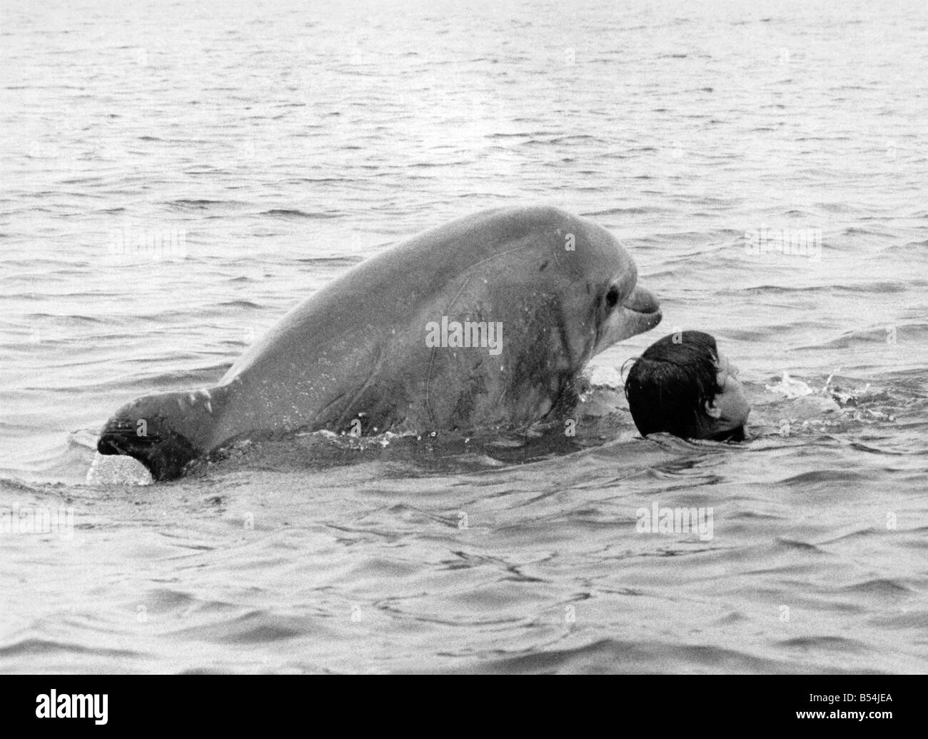 Lakeman and Percy the dolphin swimming together. 