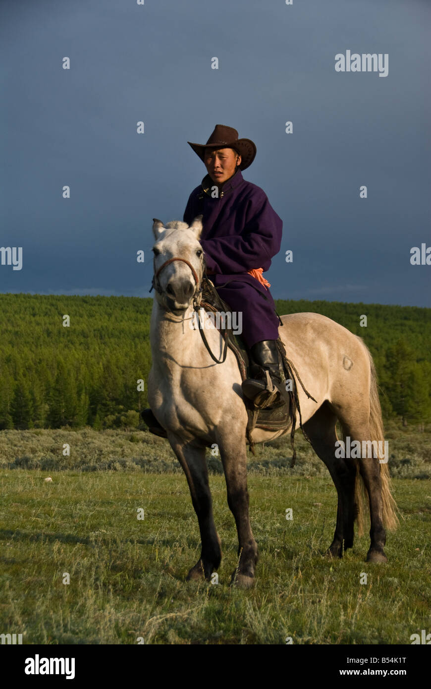 Nomad on a horse in Northern Mongolia - Stock Image