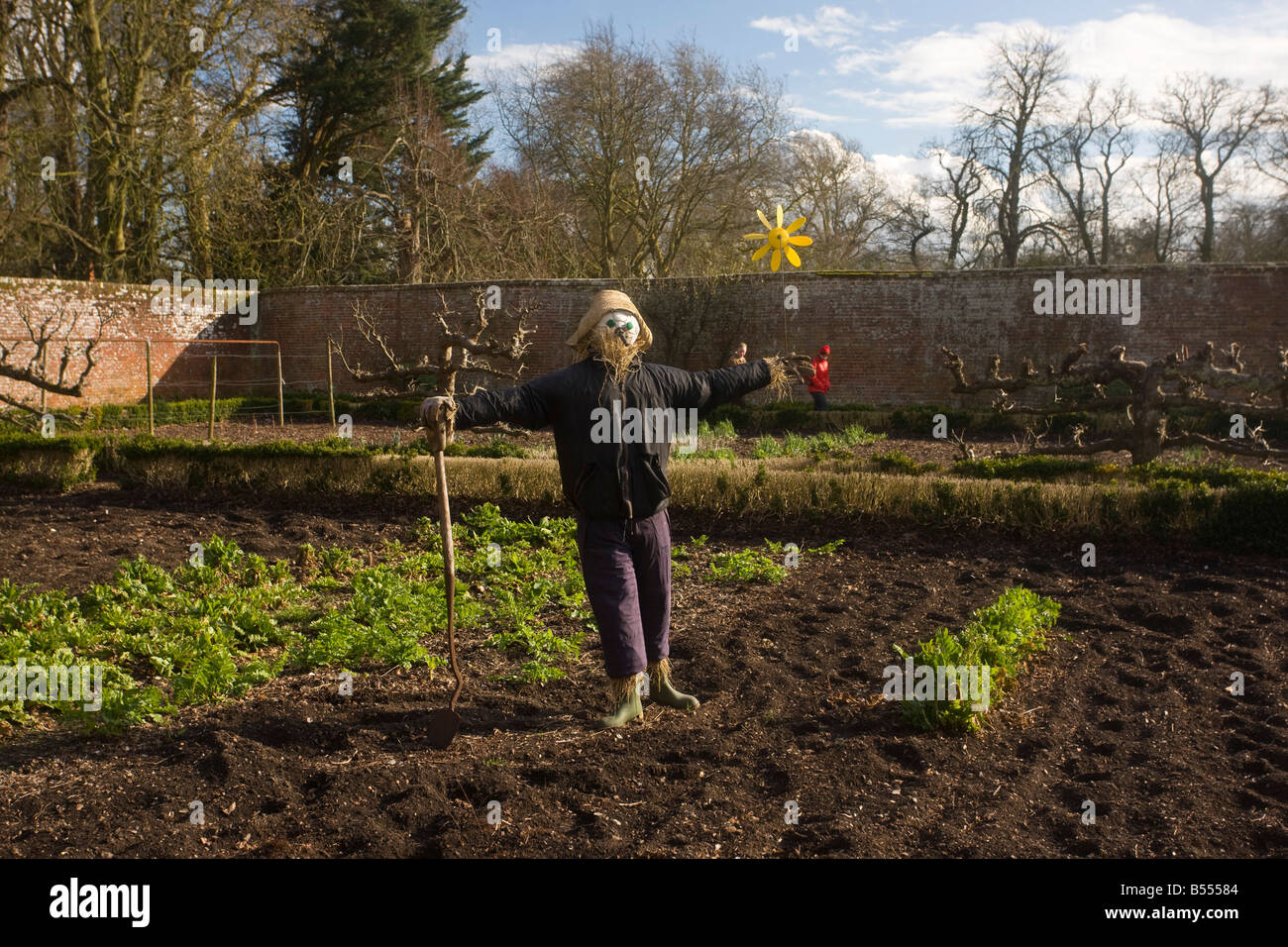 Scare crow in organic walled garden at Dean s Court Wimborne Dorset - Stock Image