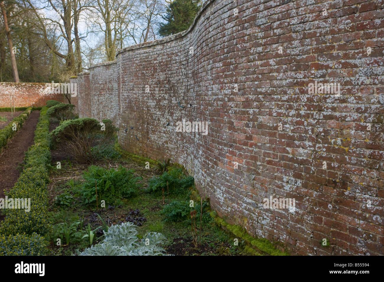 Serpentine wall in the organic kitchen garden at Dean s Court Wimborne Dorset - Stock Image