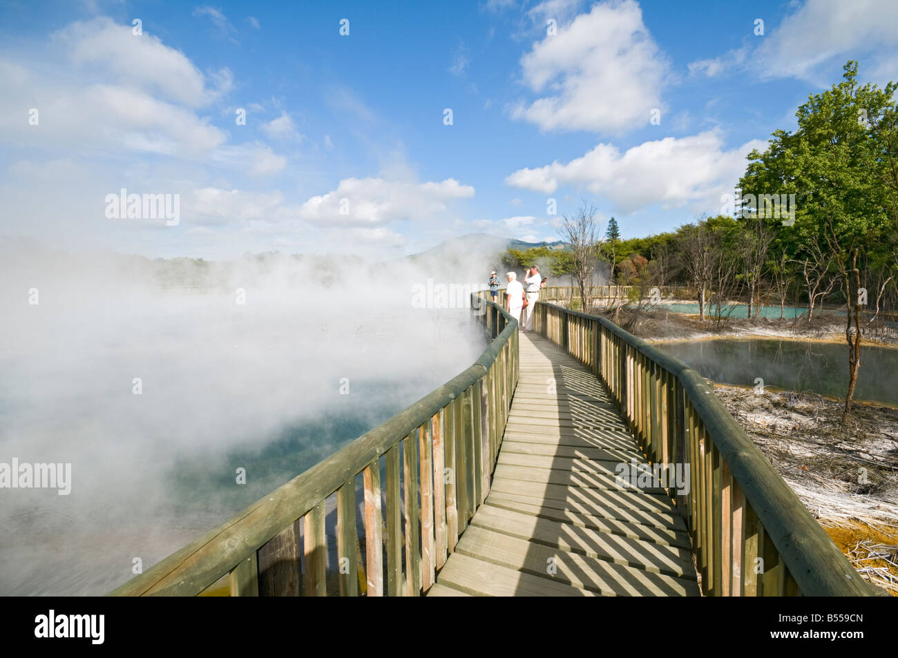 Thermal Springs North Island New Zealand