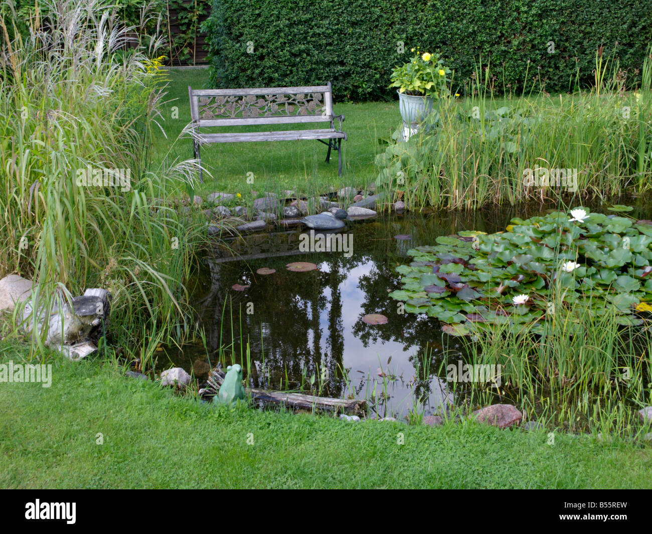 Garden pond with bench - Stock Image