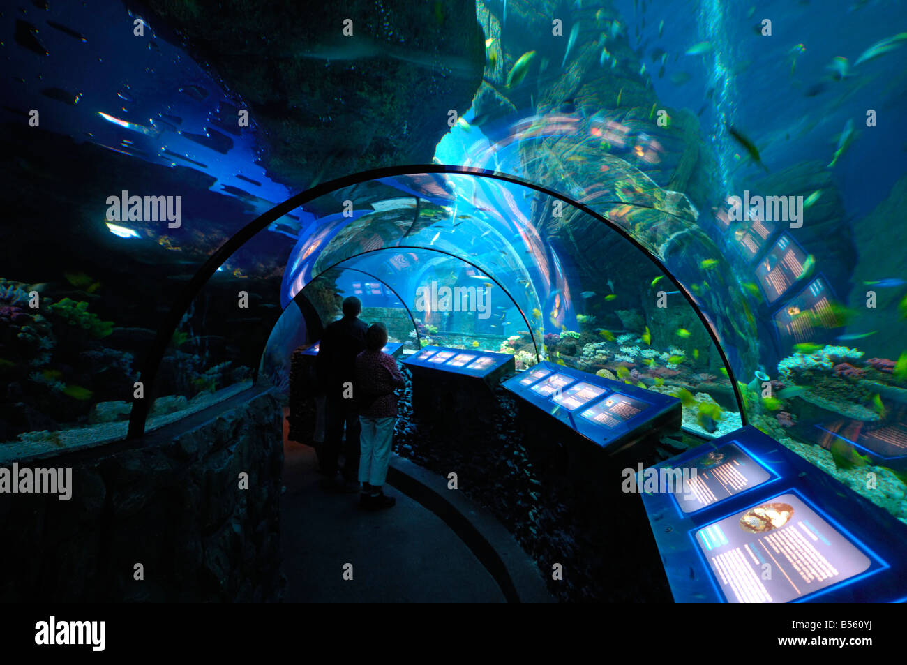 Sealife center, Olympiapark, Munich, Munchen, Germany - Stock Image
