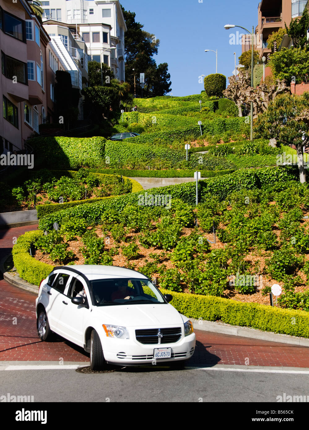 California San Francisco The Crookedest Street Lombard at Hyde Photo 19 casanf78853 Photo Lee Foster 2008 - Stock Image