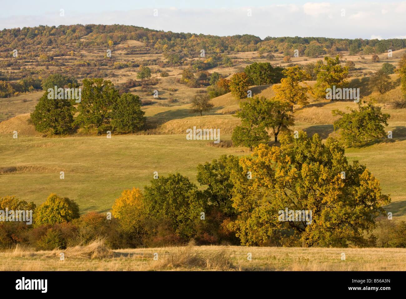 Pastoral countryside near Bunest in saxon villages area Transylvania Romania - Stock Image