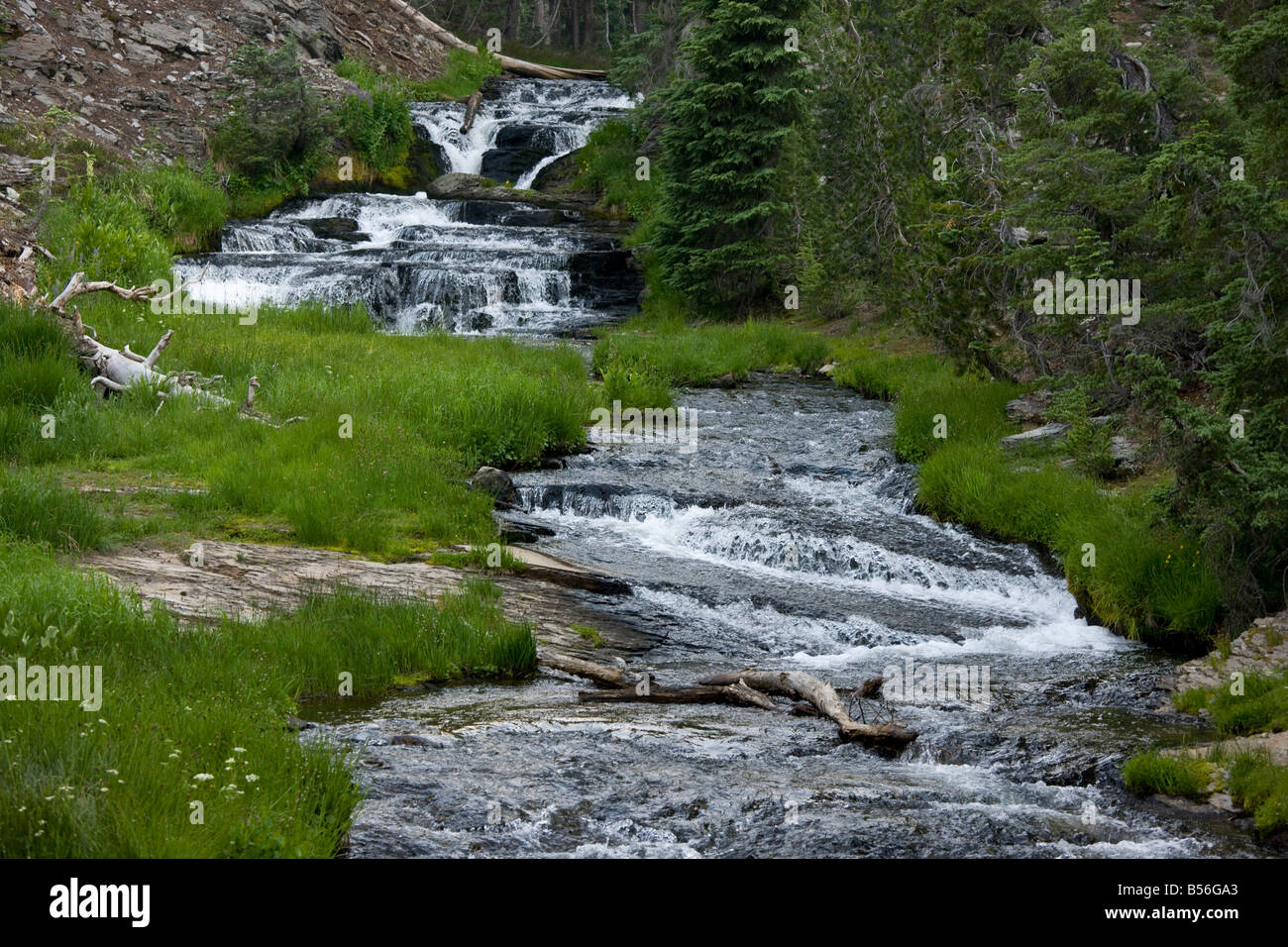 Series of cascades on small river in Mount Lassen National Park California - Stock Image