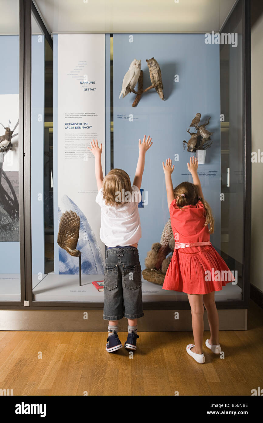 Children looking at a museum exhibit - Stock Image