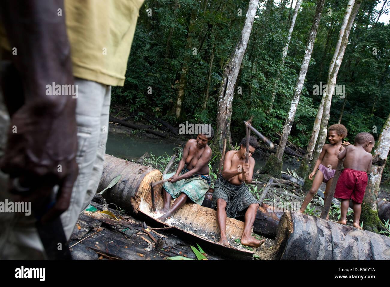 Women cutting sago palm in rainforests near Omati Village, Gulf Province, Papua New Guinea. - Stock Image