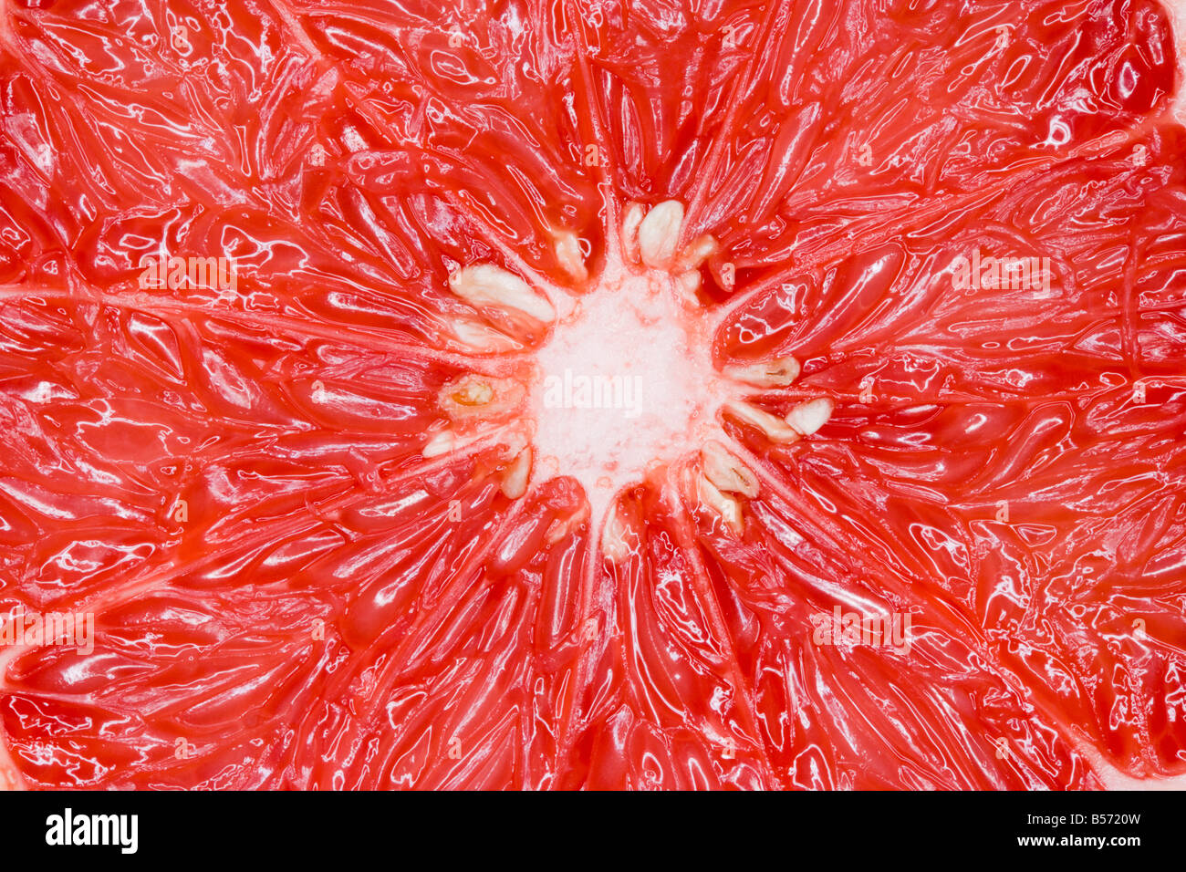 Ruby red grapefruit close up - Stock Image