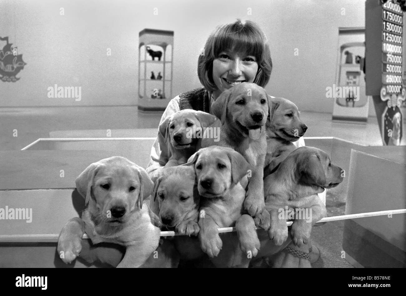 Lesley Judd Lesley Judd new pictures
