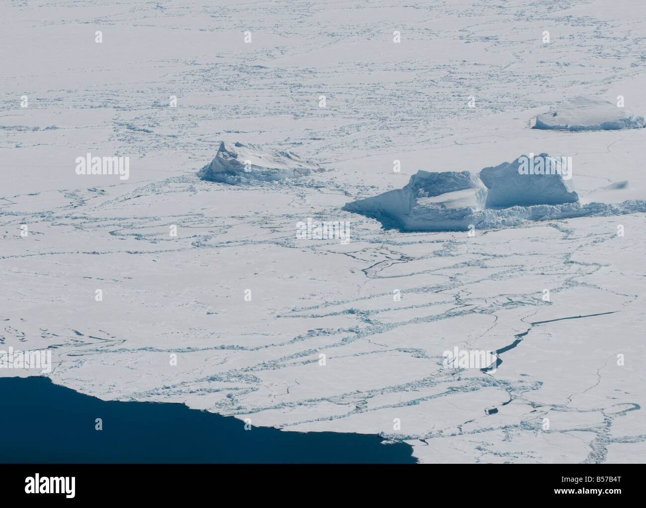 Icebergs near the floe edge are stressed by spring winds and currents causing cracks in the ice and accelerate the - Stock Image