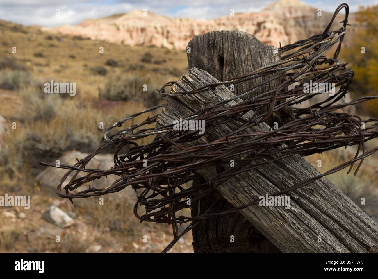 Barb wire. Barbed wire. Dubois, Wyoming, USA - Stock Image