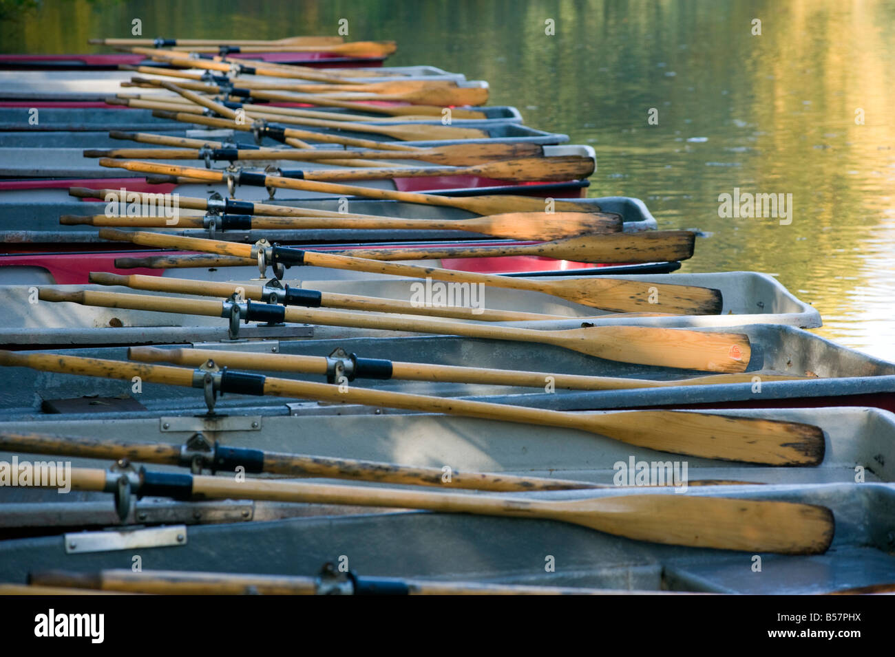 Rowing boats moored at pier on North Sea Lake or Nord See in Tiergarten Park in Berlin Germany 2008 - Stock Image