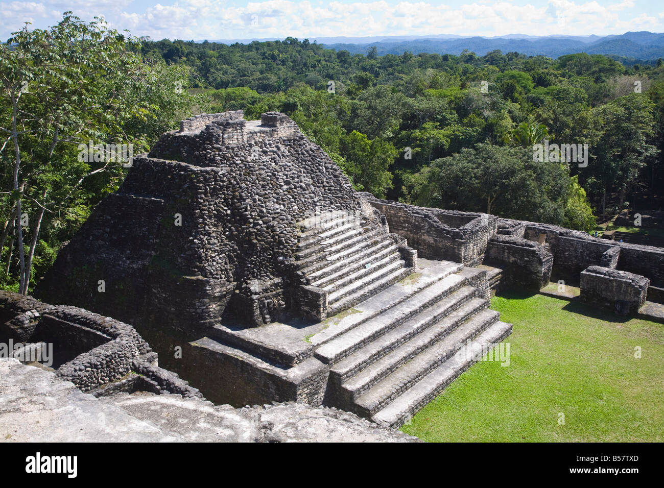 Plaza B temple, Mayan ruins, Caracol, Belize, Central America - Stock Image