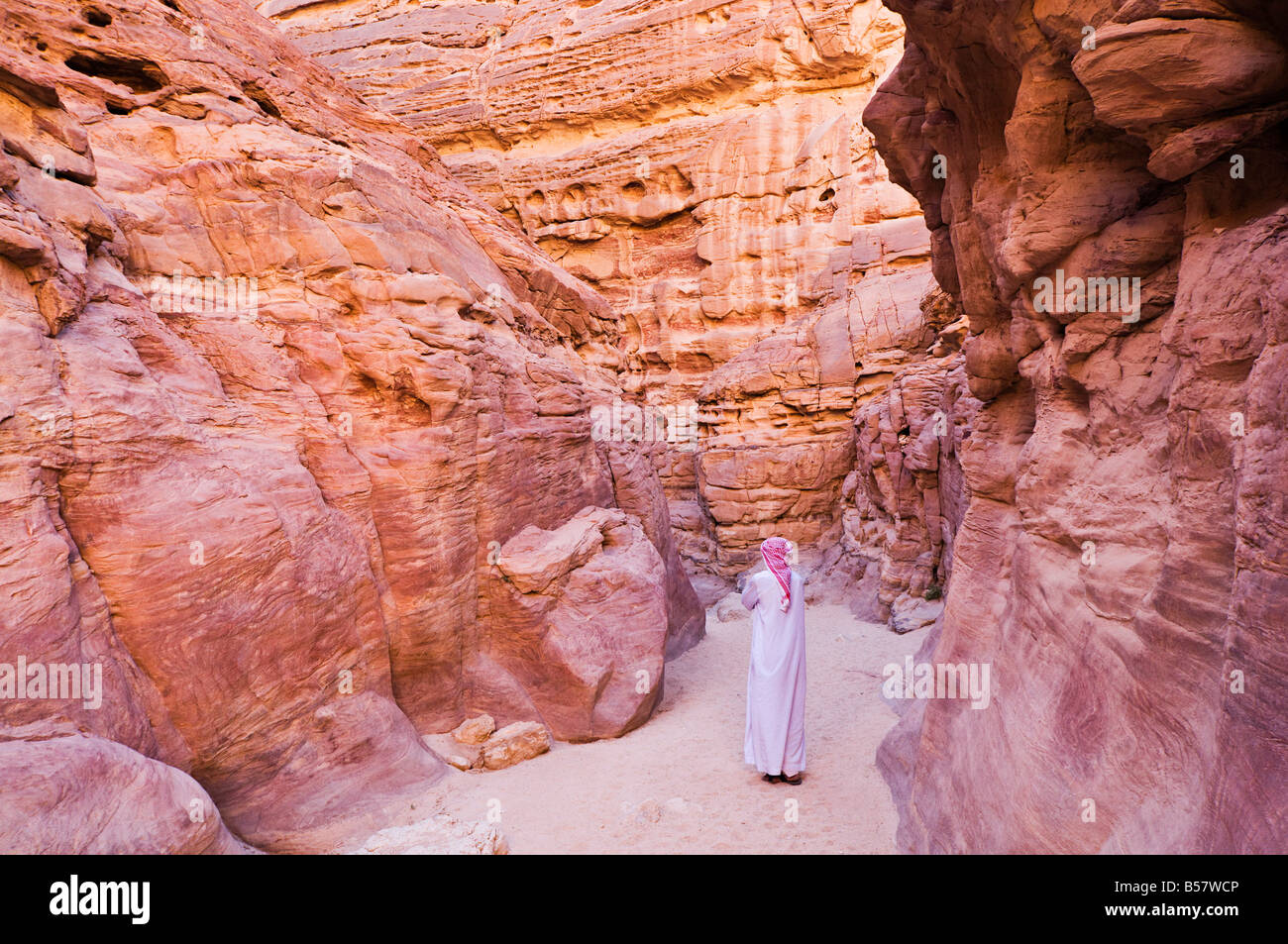 Bedouin man in the Colored Canyon, near Nuweiba, Sinai, Egypt, North Africa, Africa - Stock Image