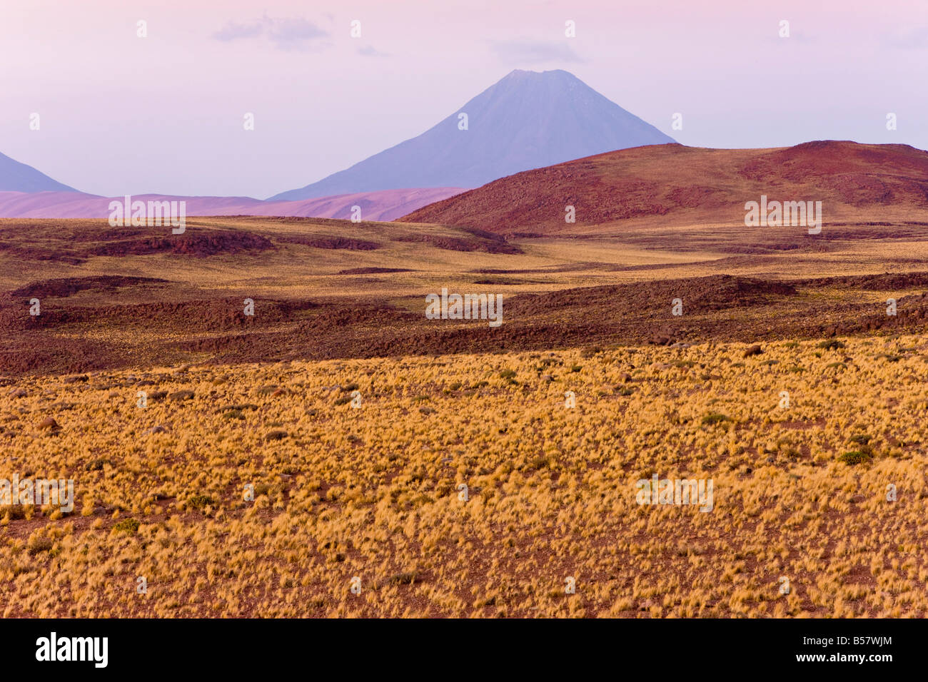 The altiplano, Los Flamencos National Reserve, Atacama Desert, Antofagasta Region, Norte Grande, Chile - Stock Image