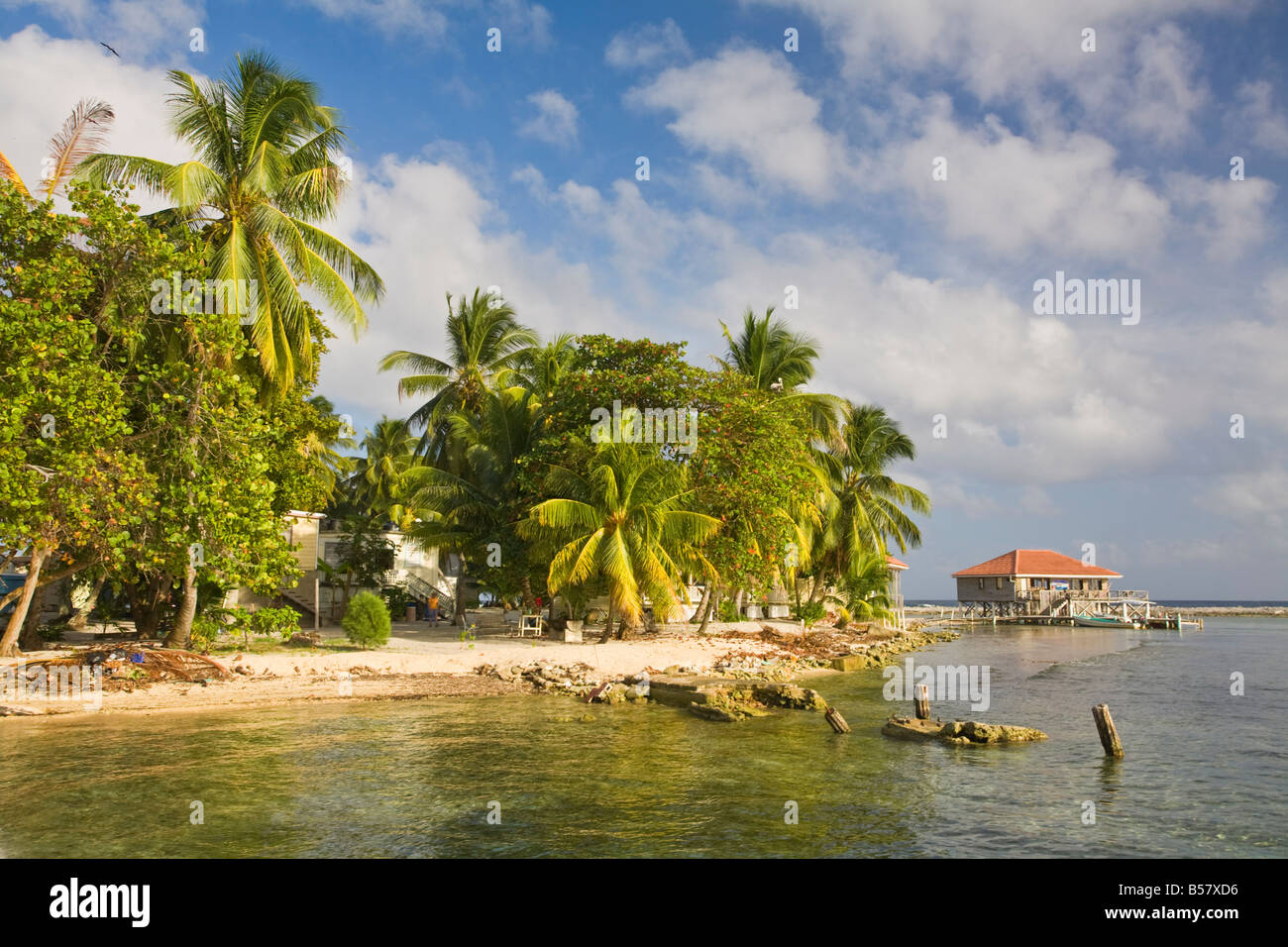 Tobaco Caye Belize Central America - Stock Image