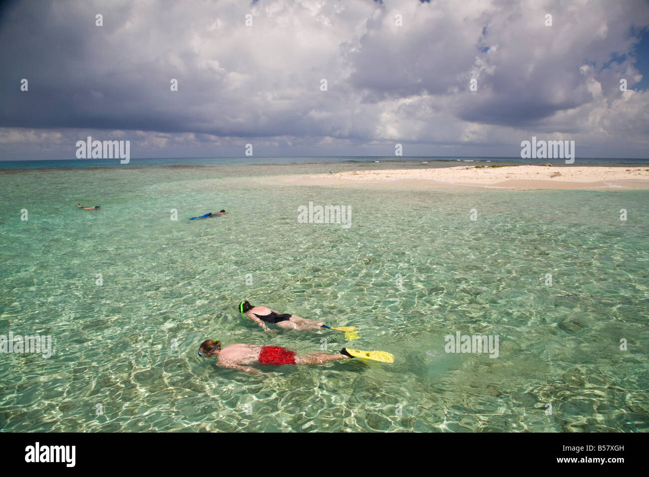 Tourists snorkelling Bird Island Belize Central America - Stock Image