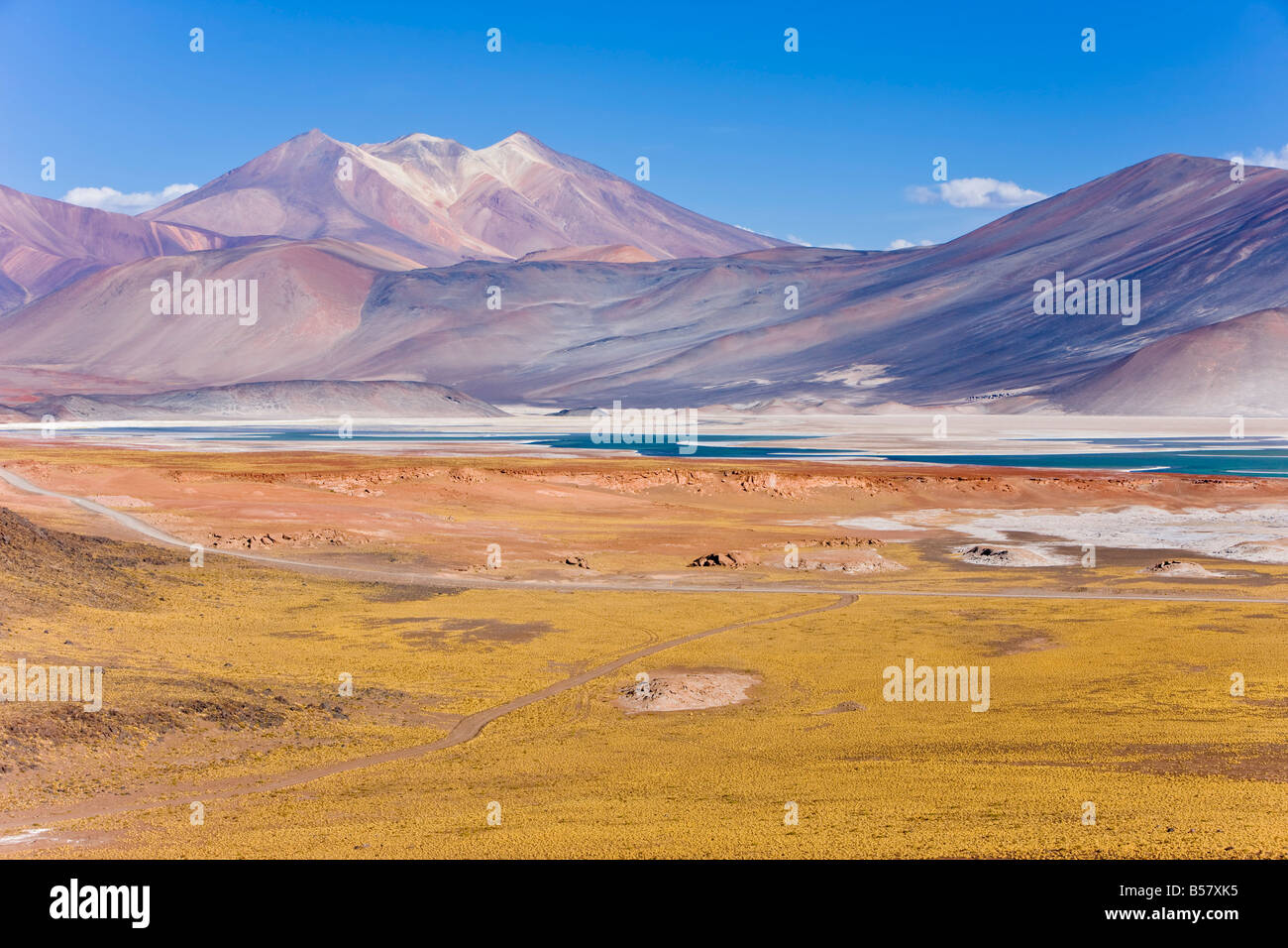 The altiplano, Los Flamencos National Reserve, Atacama Desert, Antofagasta Region, Norte Grande, Chile, South America - Stock Image