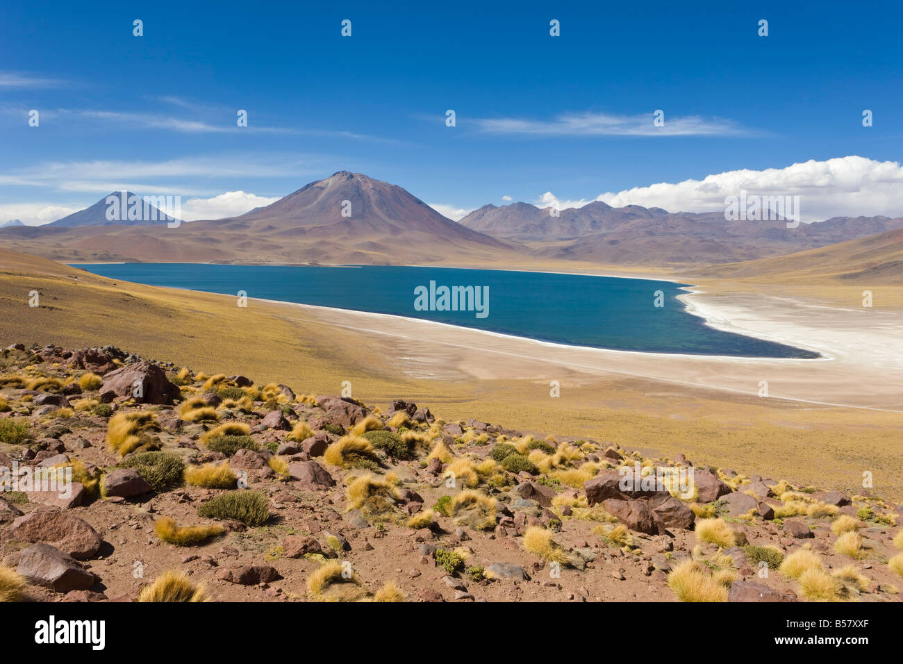 Laguna Miscanti at an altitude, Los Flamencos National Reserve, Atacama Desert, Antofagasta Region, Chile - Stock Image