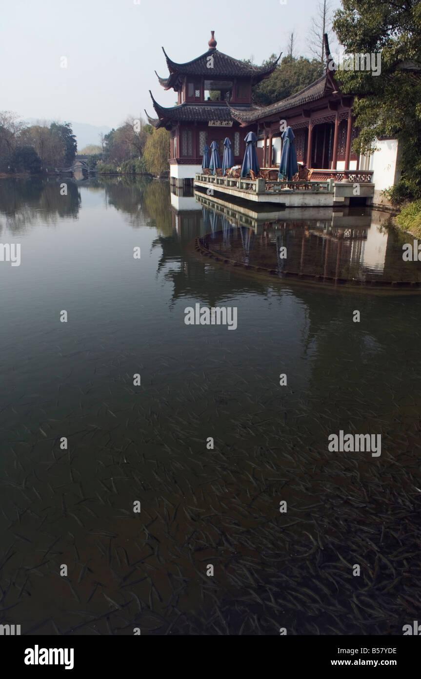 A waterside pavilion at Winding Garden at West Lake, Hangzhou, Zhejiang Province, China, Asia - Stock Image