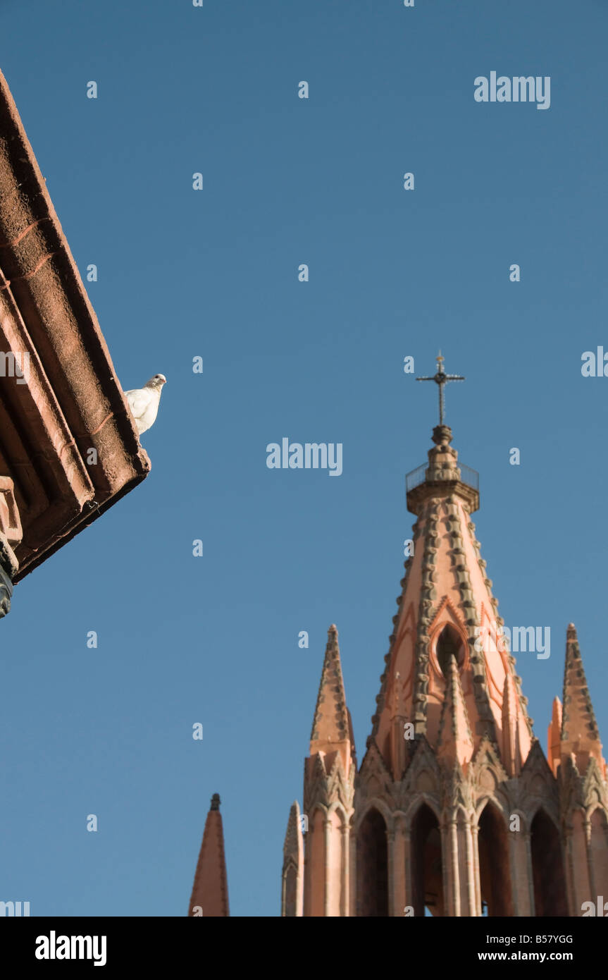 White dove on roof of bandstand in the Jardin Principal with La Parroquia, San Miguel de Allende, Guanajuato state, - Stock Image