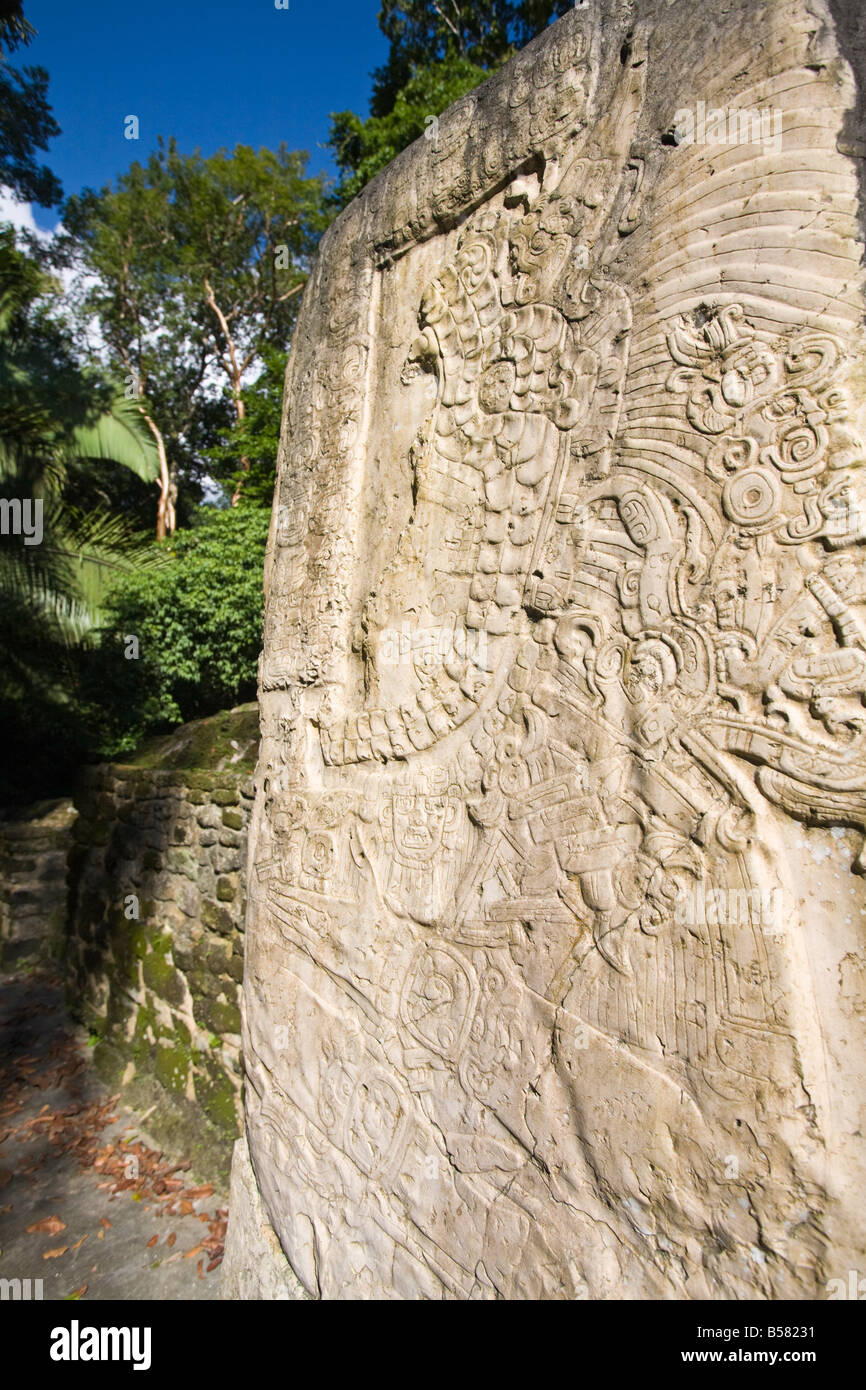 Stela 9 erected in AD 625 to commemorate the accession of Lord Smoking Shell in 608, Lamanai, Belize - Stock Image