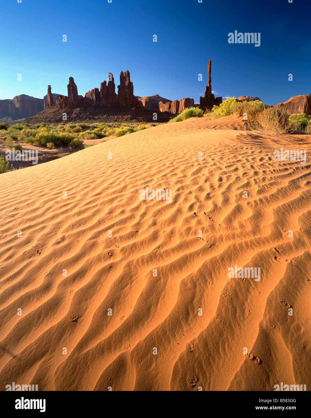 Totem Pole and Sand Springs, Monument Valley Tribal Park, Arizona, United States of America, North America - Stock Image