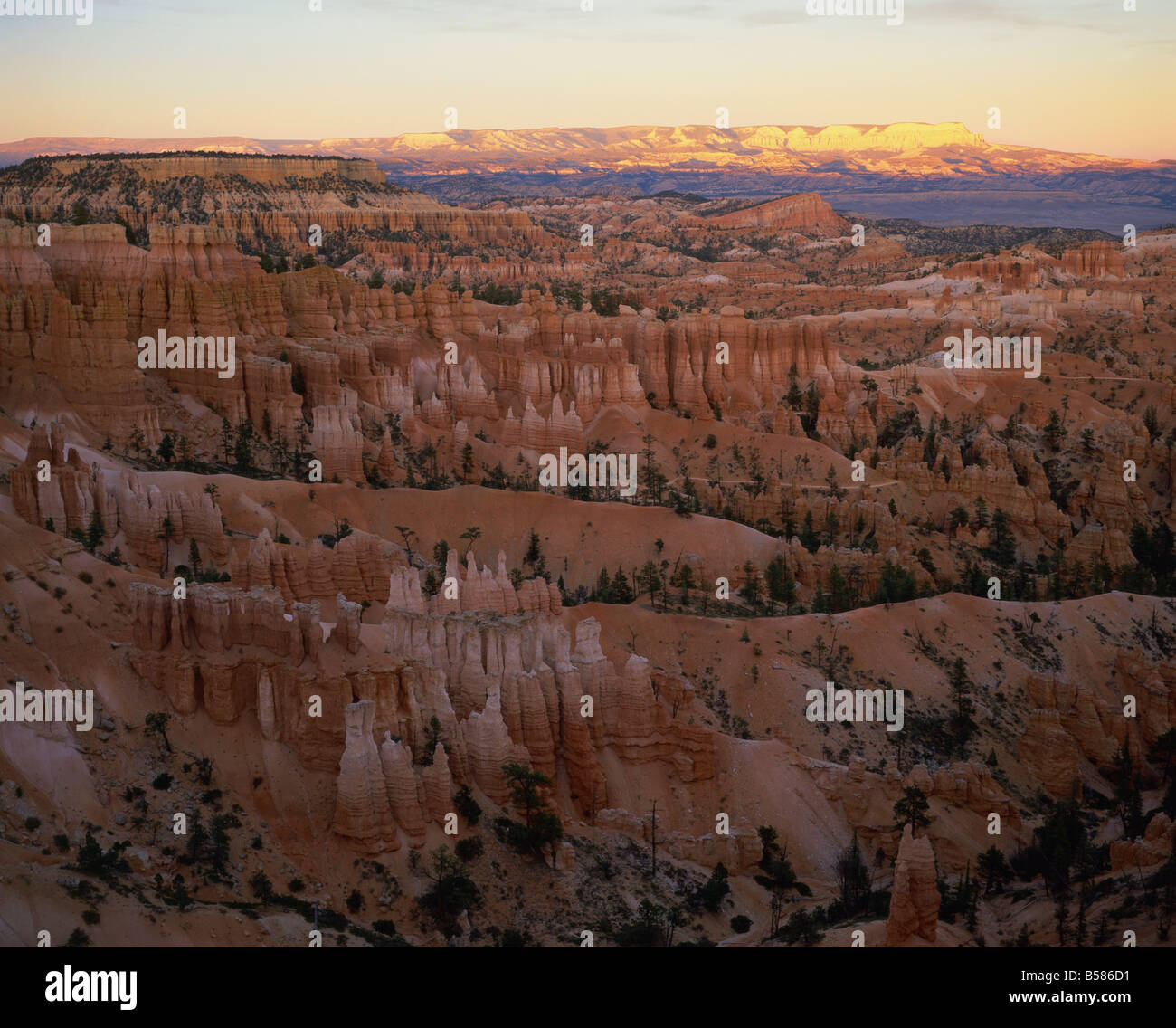 View of Bryce Canyon National Park in evening light, from Sunset Point, Utah, United States of America, North America - Stock Image