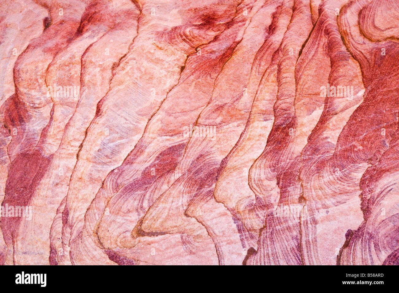 Detail, The Coloured Canyon, near Nuweiba, Sinai, Egypt, North Africa, Africa - Stock Image