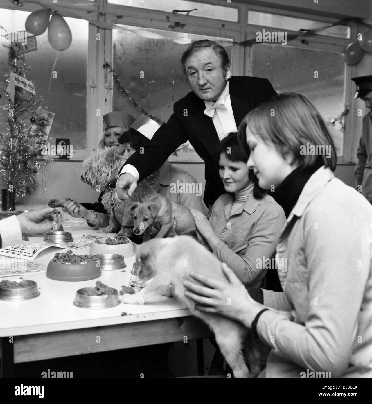 Dog Owners and their pets seen here having a Christmas party as actor Ronald Fraser acts as butler to the pampered - Stock Image