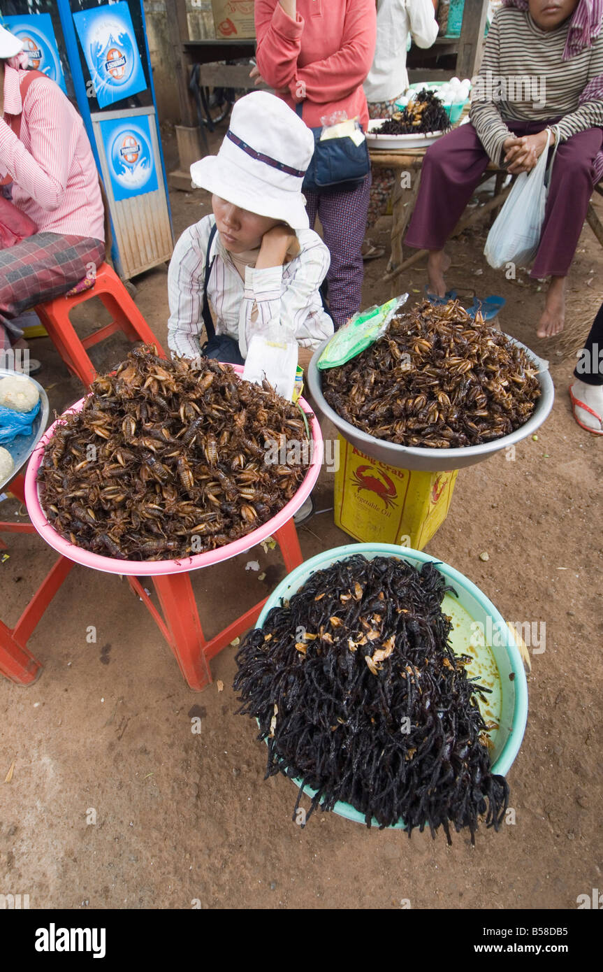 Cooked crickets and spiders for eating in market, Cambodia, Indochina, Southeast Asia - Stock Image