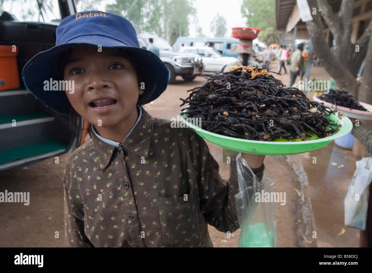 Cooked spiders for eating in market, Cambodia, Indochina, Southeast Asia - Stock Image