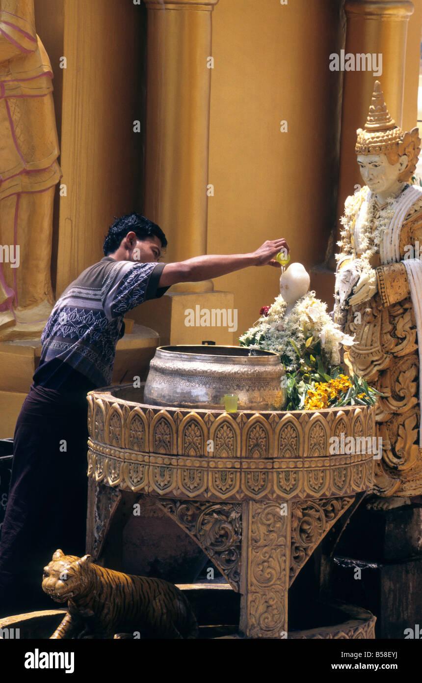 Worshipper cleanses deity statue with water on grounds of Shwedagon Pagoda in Yangon, Myanmar (Burma), Asia - Stock Image
