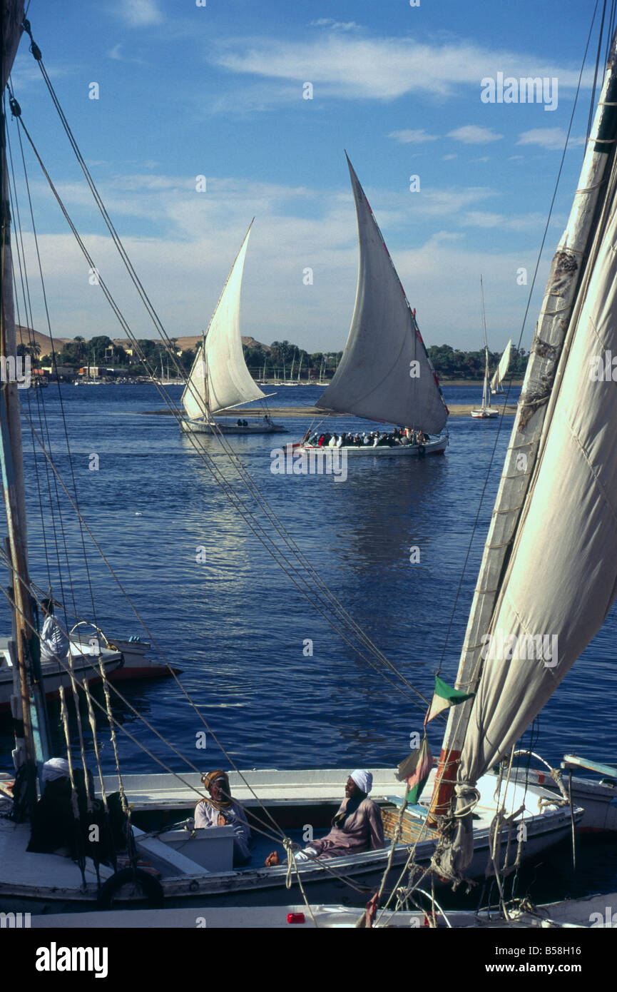 Feluccas on the River Nile, Aswan, Upper Egypt, North Africa, Africa - Stock Image