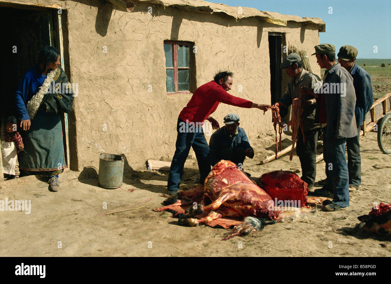 Tibetans preparing yak meat Qinghai China Asia - Stock Image