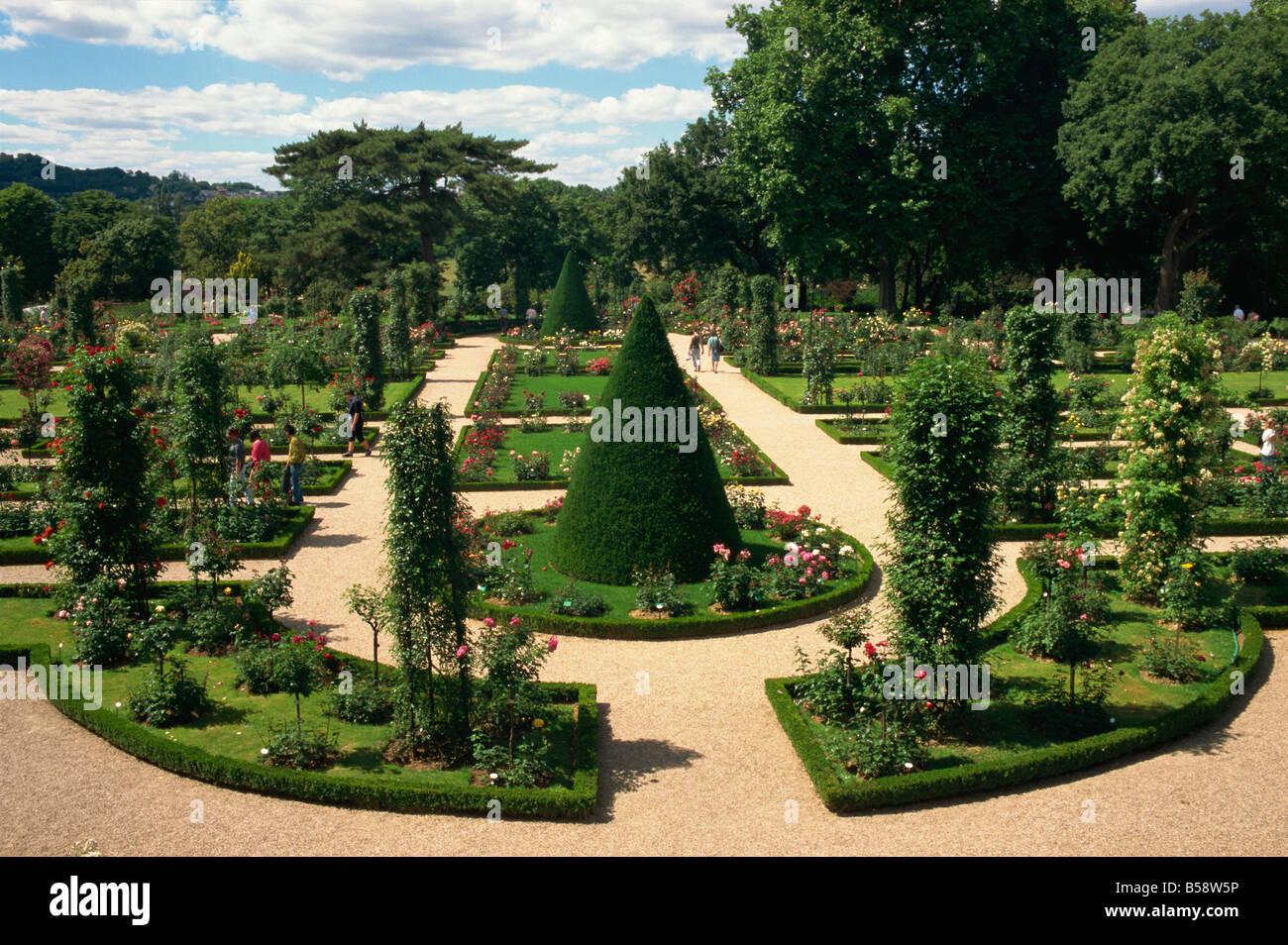 Bagatelle rose garden Bois de Boulogne Paris France Europe - Stock Image