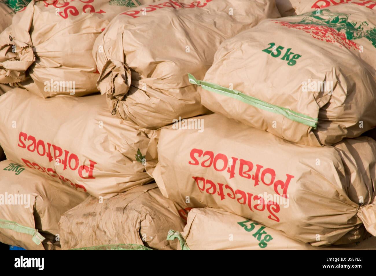 sack of potatoes spud spuds potato bag bags sacks food paper packaging market - Stock Image
