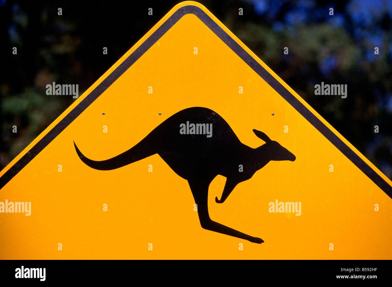 Kangaroo roadsign, Australia - Stock Image